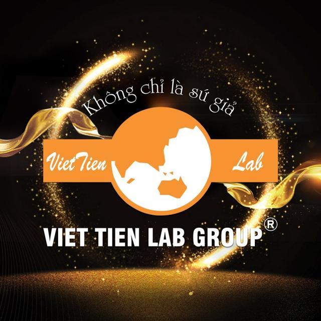 Việt Tiên Group